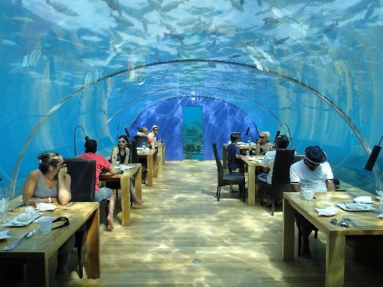 Restaurante submarino Ithaa Underwater