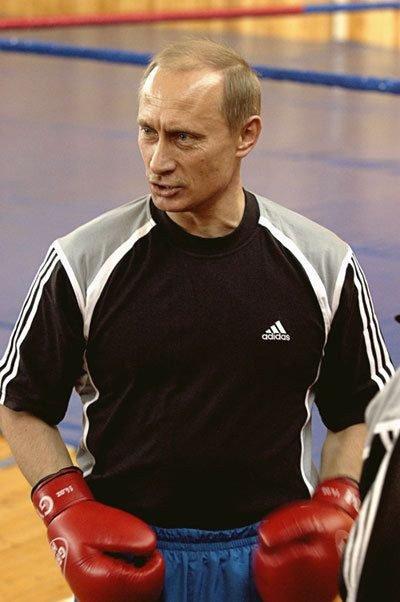 Putin boxeando