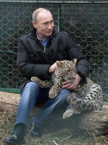 Putin acariciando a un leopardo
