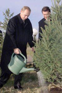 Putin regando un árbol